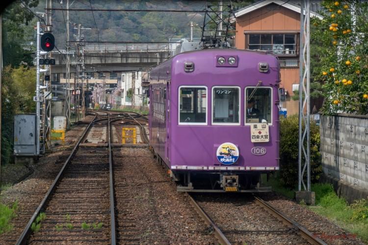 Arashiyama-1-2 (Large).jpg