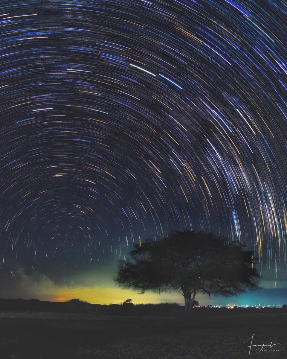 Star Trails di Baluran
