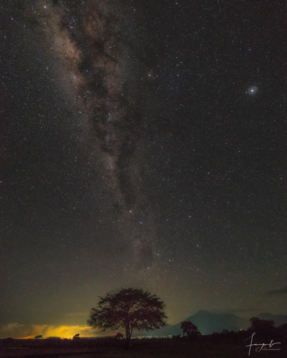 Pesona langit malam di Baluran dengan Galaxy Bima Sakti - Milky Way