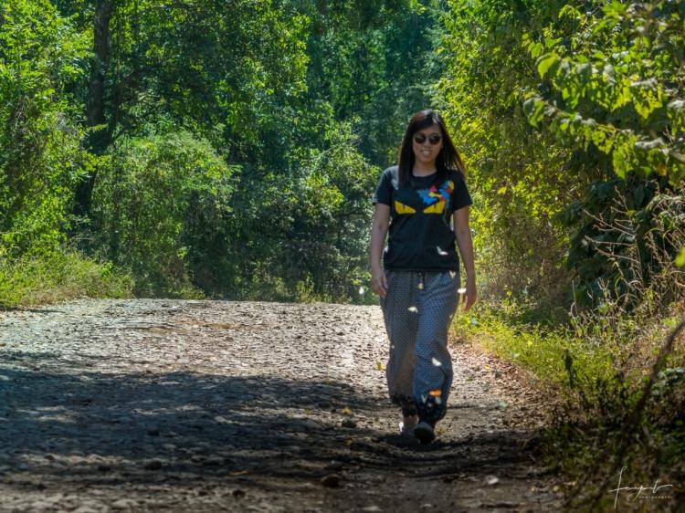 Explore Hutan Evergreen
