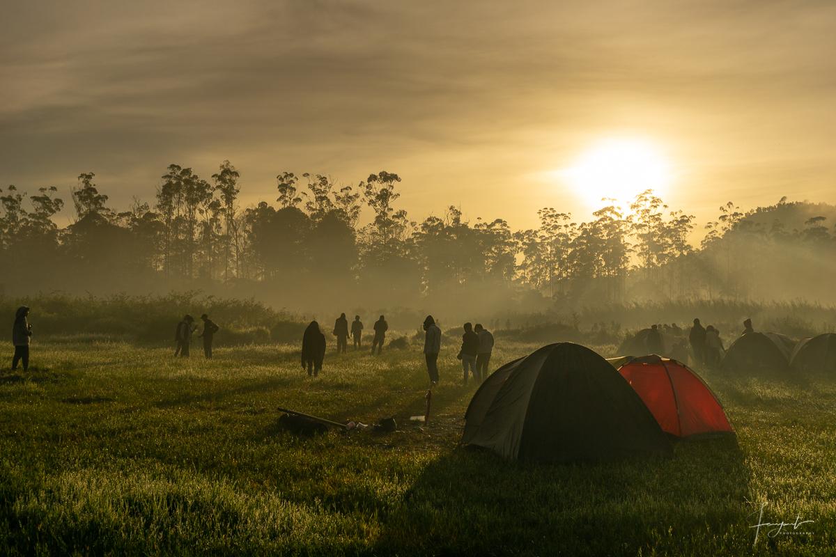 tempat wisata bandung camping ground ranca upas